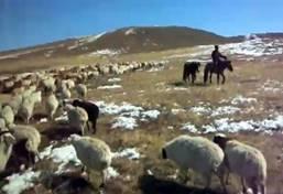 Culture et communauté - projet nomade en Mongolie