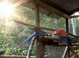 Naturschutz in Peru