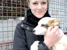 Tiermedizin und Tierpflege in Rumänien