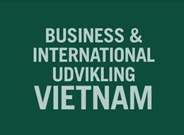 International udvikling