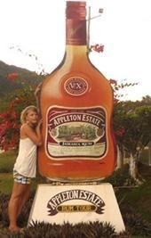 Sport Praktikum Jamaika Rum