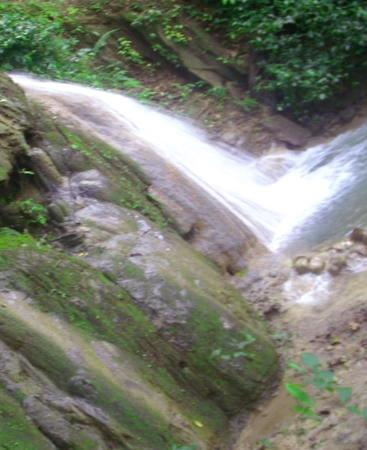 costa rica-Naturschutz-pool