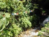 naturschutz-in-nepal-von-annabel-barteit-1