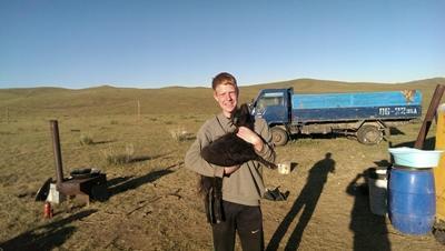 Ziege im Nomaden-Projekt in der Mongolei