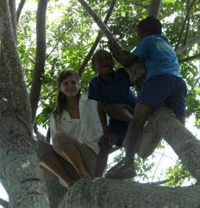 jamaika-sozialarbeit-baum