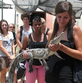 jamaika-sozialarbeit-safari