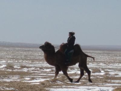 Hier reite ich auf einem Kamel