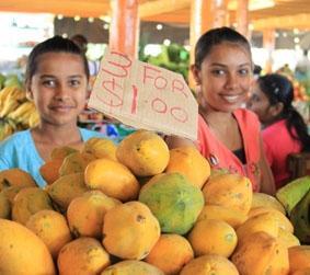 fidschi-sozialarbeit-markt