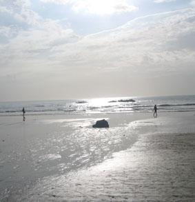 costa-rica-naturschutz-strand