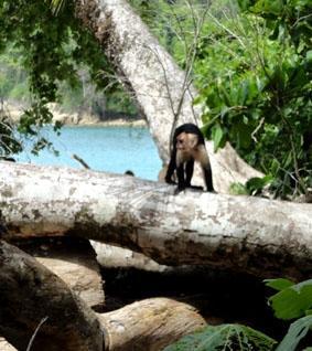 costa-rica-unterrichten-strand