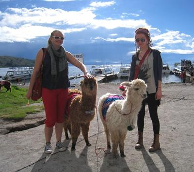 bolivien-journalismus-lamas