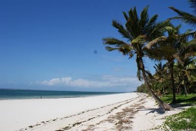 kenia-naturschutz-strand
