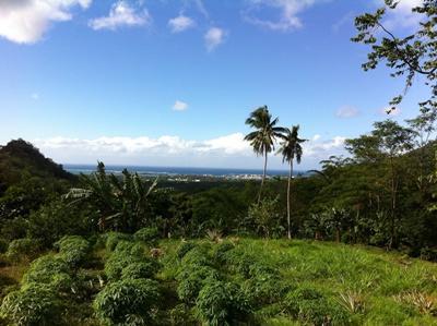 Sozial-Projekt Samoa, Landschaft