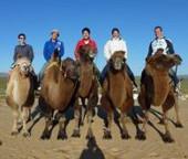 mongolei-menschenrechte-kamelreiten