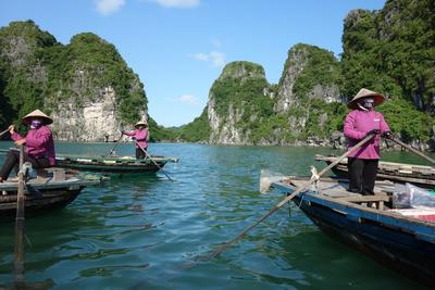 Boote in Vietnam , Projects Abroad