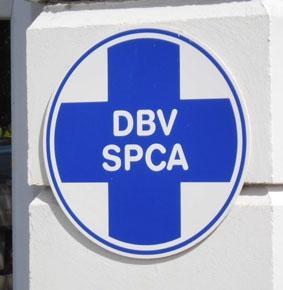 sudafrika-tierpflege-arbeit