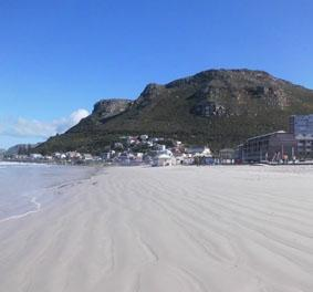 sudafrika-tierpflege-strand