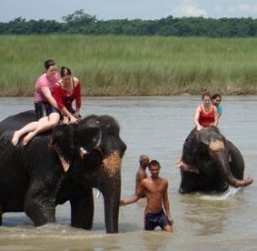 nepal-medizin-elefanten
