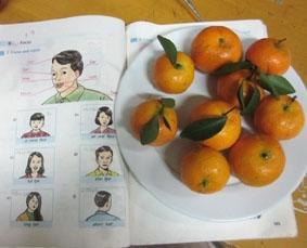 vietnam-unterrichten-schule