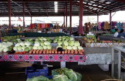 Markt auf Samoa, Projects Abroad