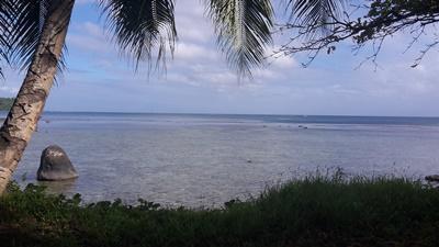 Natur Samoa, Projects Abroad