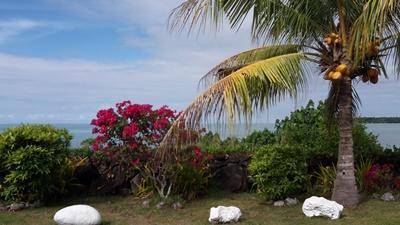 Farbenpracht Samoa, Projects Abroad