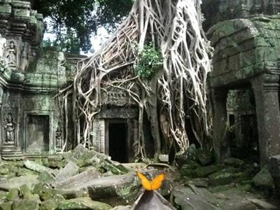 Khmer-Projekt in Kambodscha