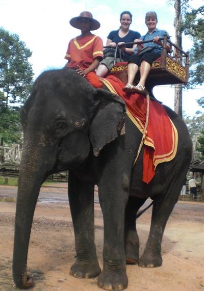 kambodscha-sozialarbeit-elefant