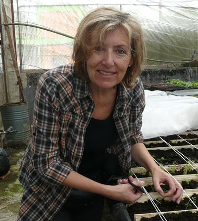 jamaica-farming-arbeit