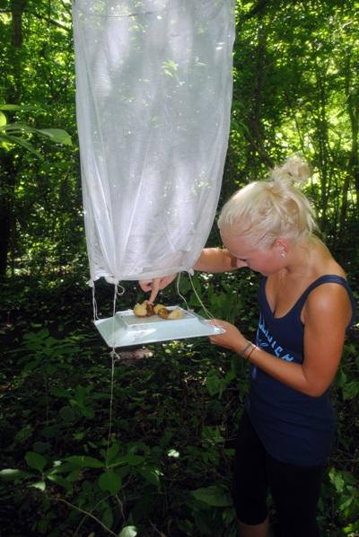 Natur & Miljø i Mexico og Costa Rica – Astrid Martin