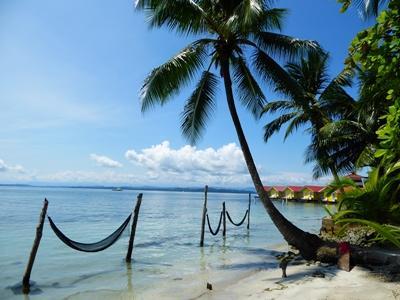 Billede af strand og palmer i Costa Rica.