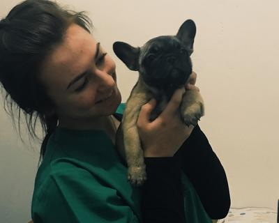 Anna spending time with a dog at her Veterinary Medicine placement