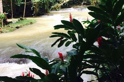 A beautiful waterfall in Jamaica