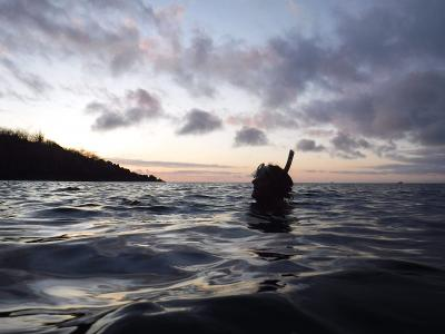 Conservation volunteer snorkelling during her free time