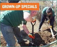 Grown-up Specials