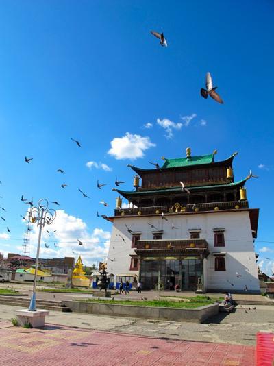 Volunteering Mongolia
