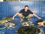 With turtles at Phuket aquarium