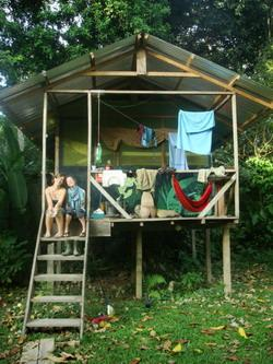 Our jungle home