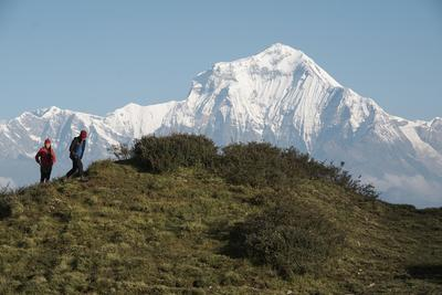Conservation volunteers hiking near the Himalayas
