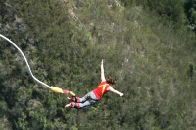Bungee!