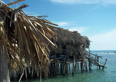 Travels in Jamaica