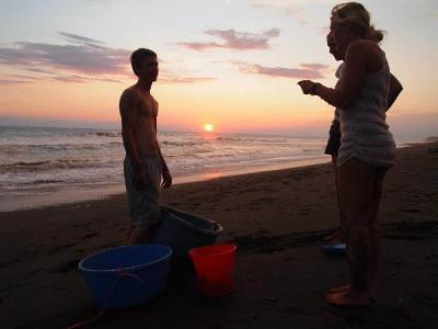 Releasing hatchlings at sunset