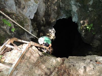 A cave in Bara Honda