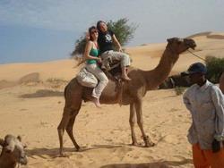 Our terrifying camel trek