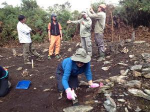 Volunteering in Peru