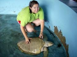 At the turtle camp