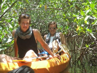 Exploring the mangroves