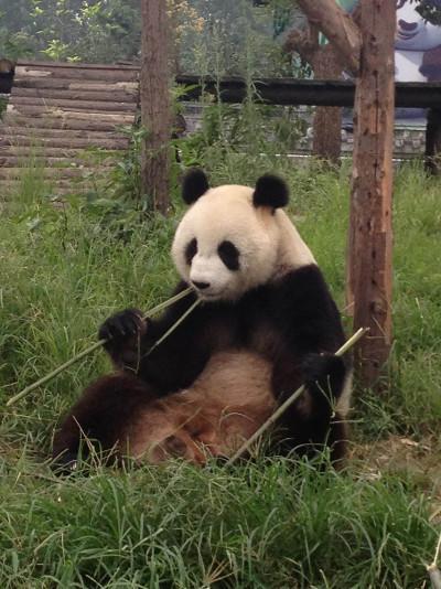 Weekend trip China