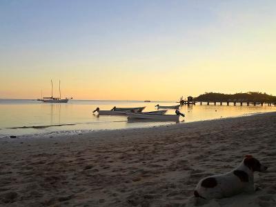 Free time in Fiji
