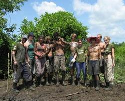 Muddy at the mangroves